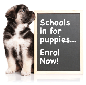 puppy_school_tile