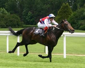 race_horse