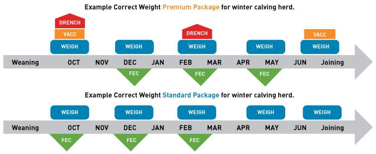 Correct weight program flow chart